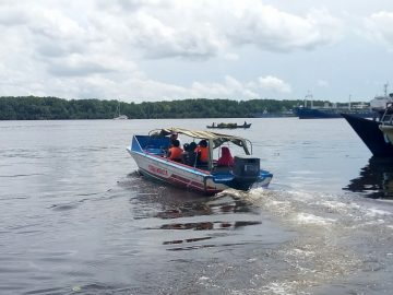 Orangutan Tour and ecotourism Operator ( DMC) in Tanjung Puting National Park Borneo. our services houseboat river cruise and trekking in the kalimantan rainforest