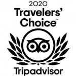 orangutan tour travel choice tripadvisor